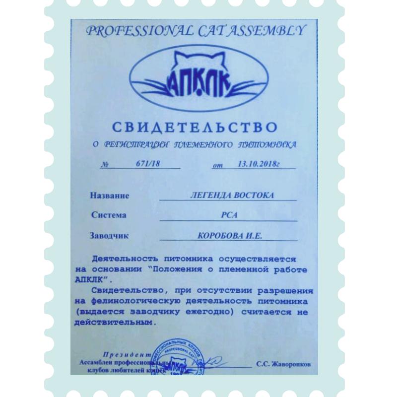 svidetelstvo prozrachnyj - Легенда Востока
